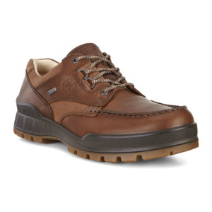 Ecco | Track 25 GTX High - Cocoa Brown / Camel